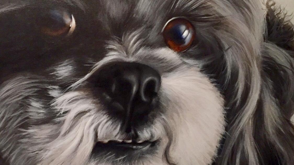 Painting schilderij portret pet portrait huisdier opdracht acryl canvas doek handpainted handgeschilderd puppy eyes cute dog hond hondje fur portretten paint acryl acrylic verf